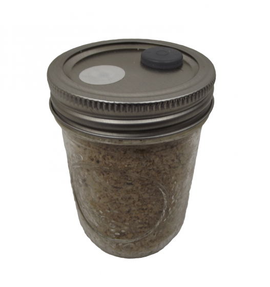 BRF JARS ™ Brown Rice Flour Based Mushroom Substrate