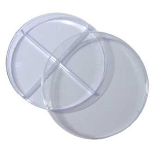 Petri Dish 100 X 15mm Pack of 20 With 4 Sections