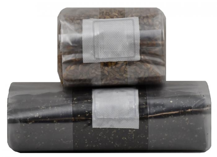 Mushroom Grow Kit (Quick Kit)