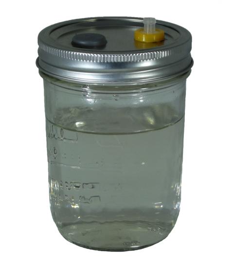 Liquid Culture Jar