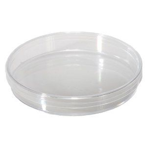 Petri Dish 100 X 15mm Pack of 20 sterilized No Divider