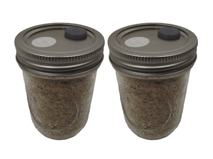 BRF JARS ™ Brown Rice Flour Based Mushroom Substrate 2 Pack