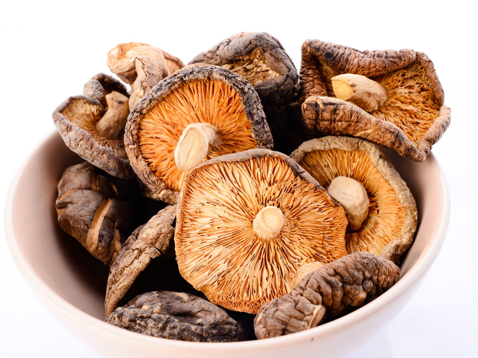Getting the Best Out of Dried Mushrooms