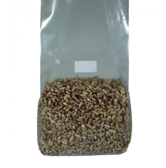Sterilized Rye Berry Mushroom Substrate Bag