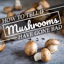 How to Spot Bad Mushrooms